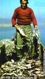 Dojran lake - richest lake with fish