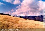Desat landscape