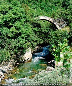 Elenski skok bridge - Tresonecka river